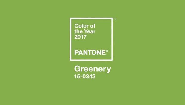 color-8bb0c154-030a-45d2-bb64-5eca8ac0e227